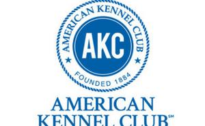 akc american kennel club