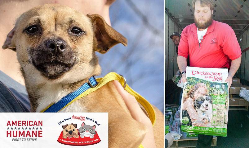 american humane and chicken soup for the soul pet food