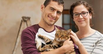 Adopt-A-Shelter-cat month goodnewsforpets
