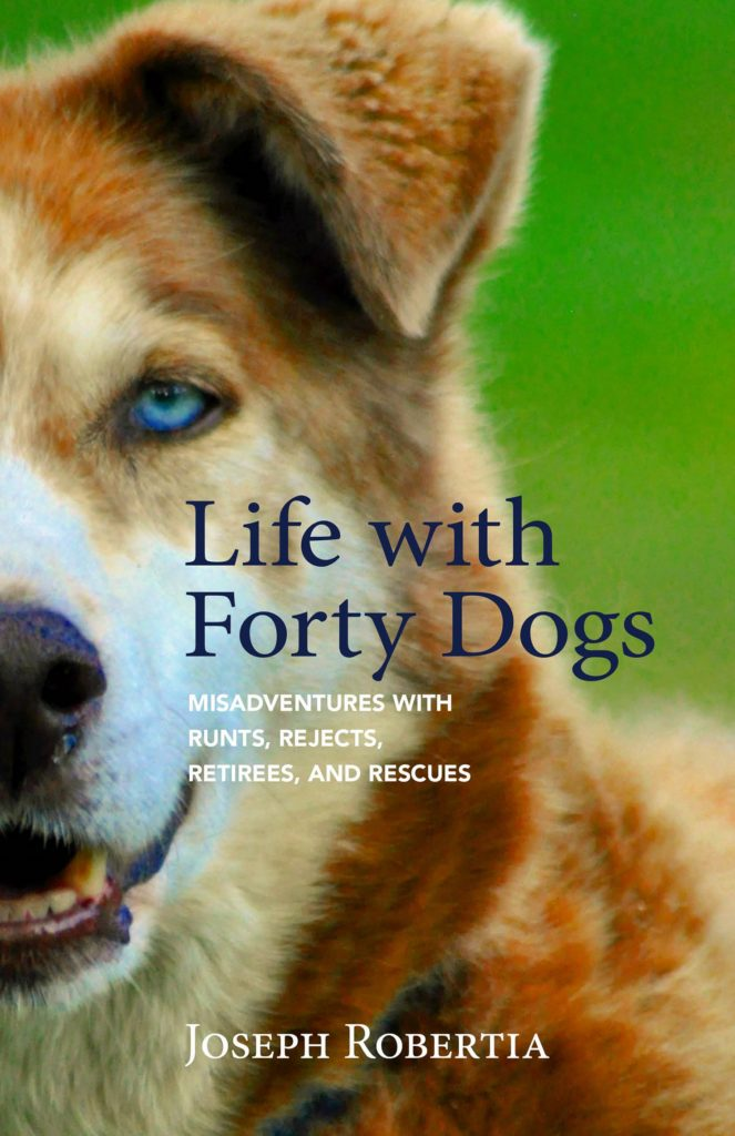 life with forty dogs dog writers dwaa