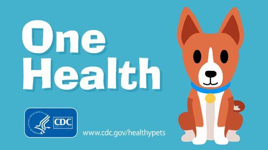 one health cdc