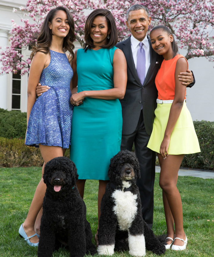 presidential pets checkers day dogs in politics day obama
