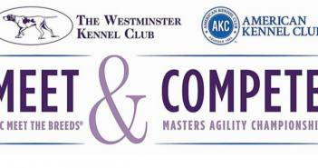 westminster kennel club american kennel club meet and compete meet the breeds