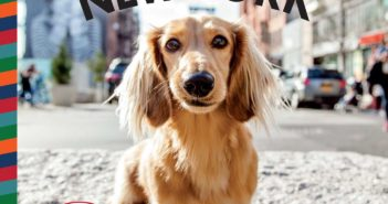 canines of new york heather weston
