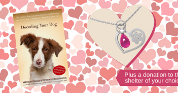 february contest heart paw pet behavior decoding your dog