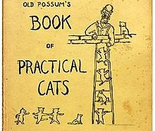 Book of Practical Cats Cover