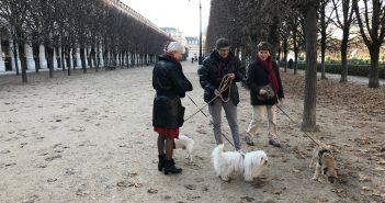 Dog WalkersofParis