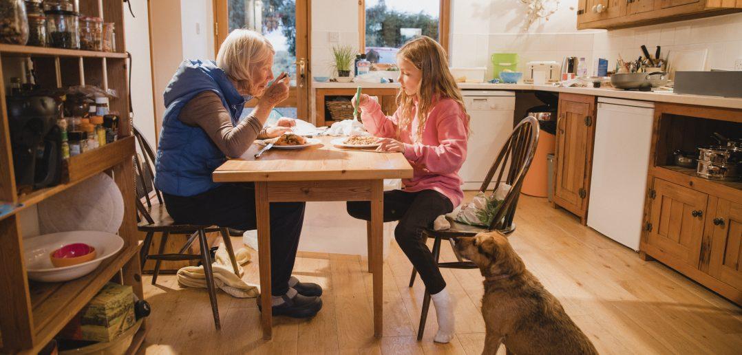AVMA backs legislation promoting new xylitol pet safety requirements
