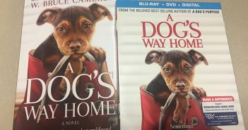 A Dog's Way Home DVD, Blue Ray