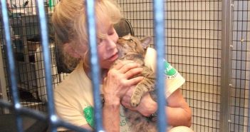 Sandy Weinstein and her adopted cat Toto