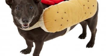 Chewy Frisco Hot Dog Costume