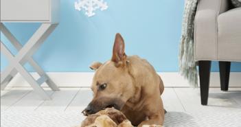 Outward Hound Gingerbread Man Dog Toy