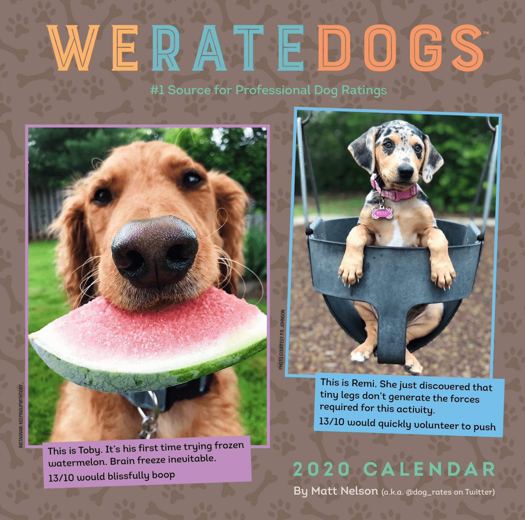 weratedogs we rate dogs calendar 2020