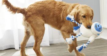 Frisco Yeti Dog Rope Toy