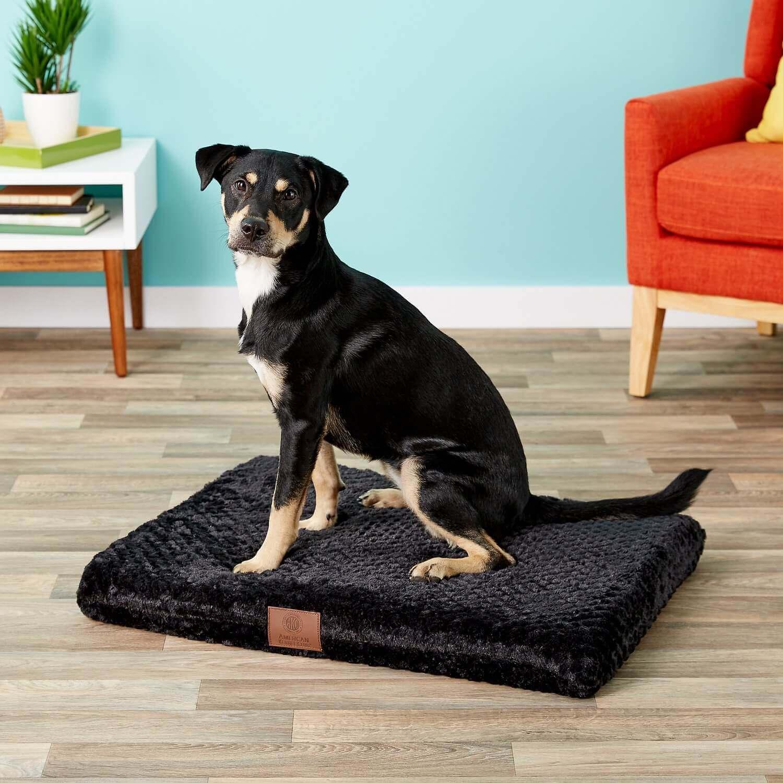 akc American Kennel Club orthopedic dog crate mat bed
