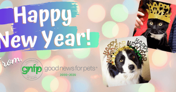 new year new years resolution pet parents
