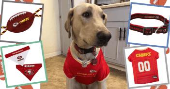nfl pets first dog toy superbowl super bowl