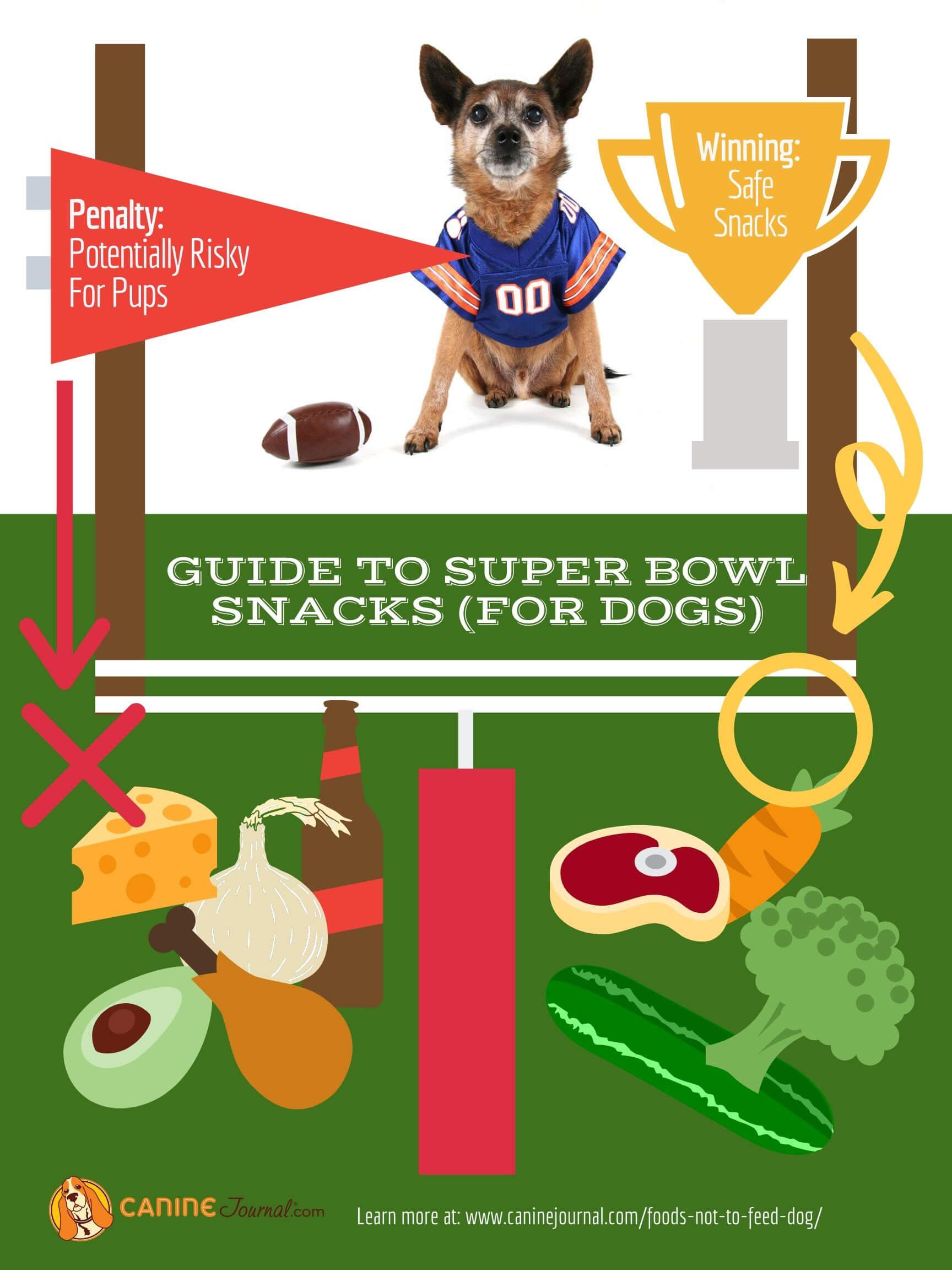 super bowl snacks pet safety