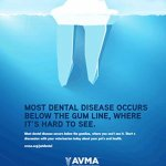 AVMA Dental Graphic