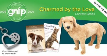 Goodnewsforpets.com Charmed by the Love of A Labrador Art 1401