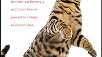 Decoding Your Cat Book