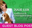 Guest Blog Post Julie Lux