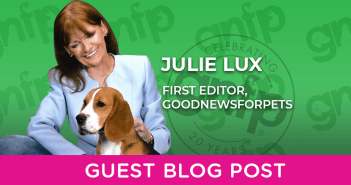 Guest Blog Post Julie Lux