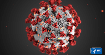 Model of the Corona Virus by the CDC