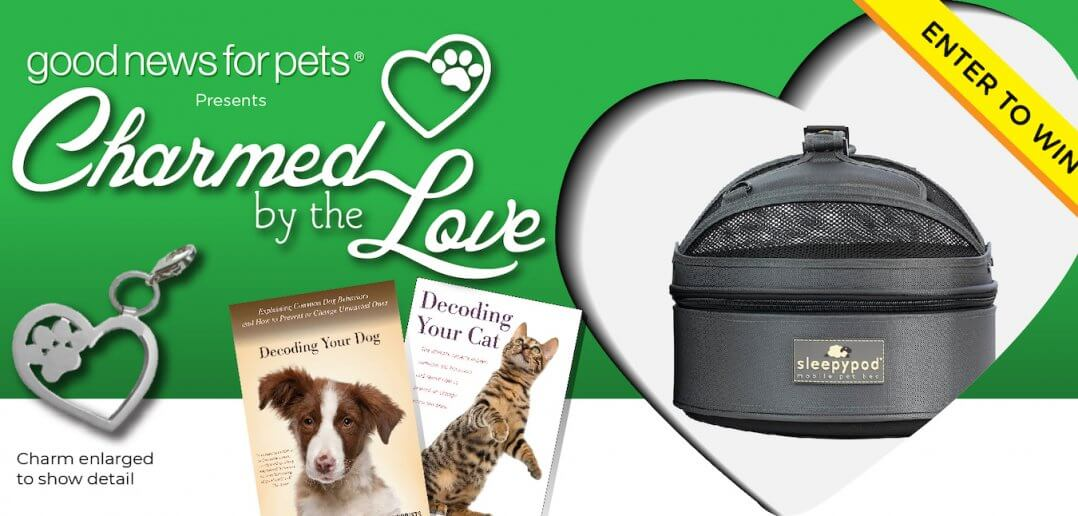"New ""Charmed by the Love"" Contest Features Sleepypod Mobile Pet Bed"