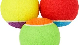 Frisco dog ball toys