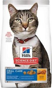 Cat Dental picture 2