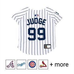 MLB jersey
