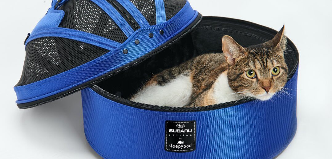 Suburu Launched Pet Accessories Line Featuring Sleepypod Products & More