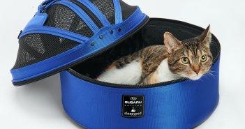 Sleepypod Cat Carrier