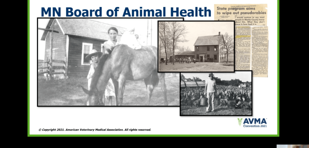 2021 AVMA Virtual Convention: Animals in Disasters
